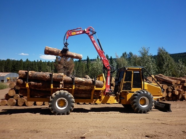 oscar-forwarder-160-TH-LS-bertotto